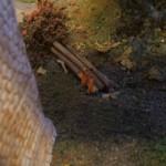 Petite pause à l'ombre du pont de Boudry
